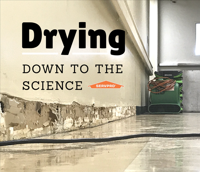 """Drying down to the science"" in front of picture of mold with SERVPRO logo"