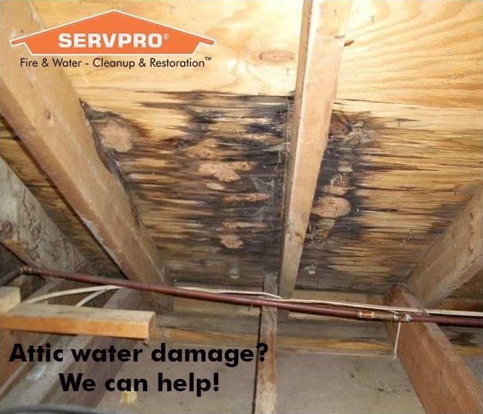 Attic with water damage with SERVPRO logo