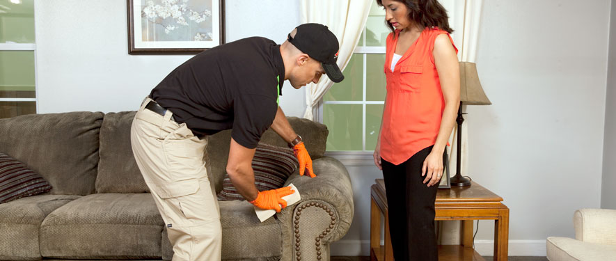Highland Park, MI carpet upholstery cleaning